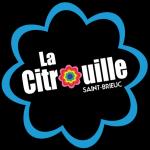 Logo-Fleur-BLEU-300x300.png